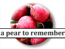 A Pear to Remember Blog Author